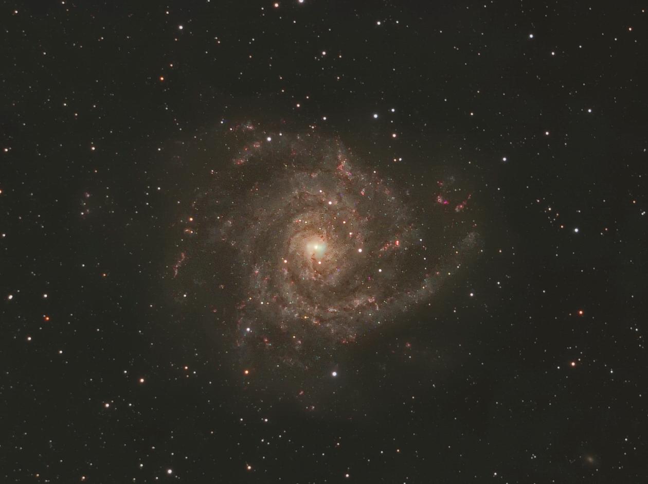Spiralgalaxie IC 342