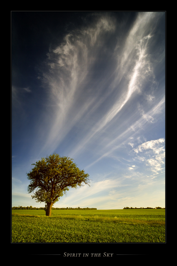 Spirit in the Sky II