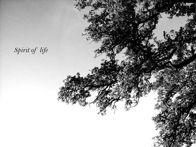 spirit of life...