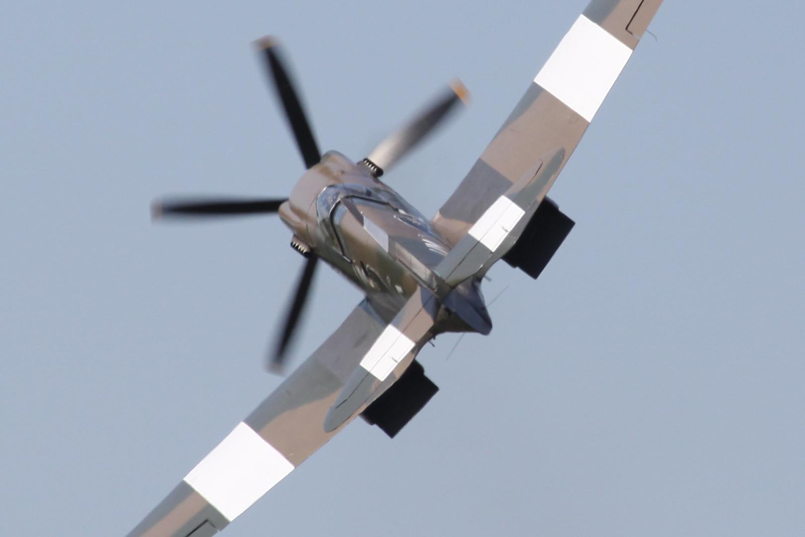 Spitfire: Auch von der rückwärtigen Ansicht sieht sie toll aus