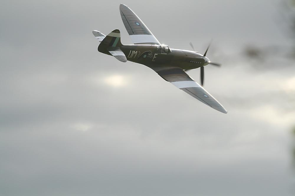 Spitfire auf der Hahnweide 2009