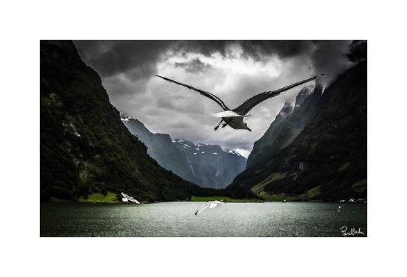 Spitfire - Norvege