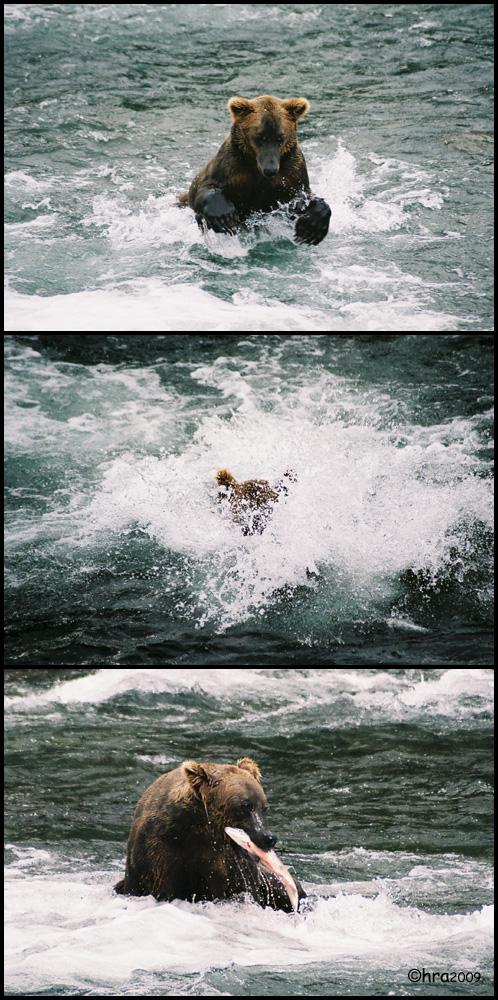 ***splash***