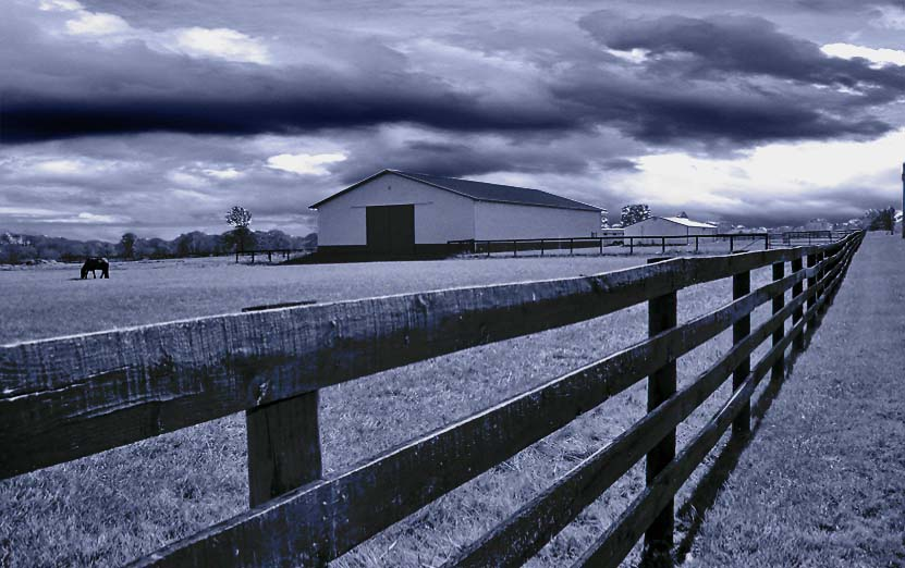 Spooky Farm........