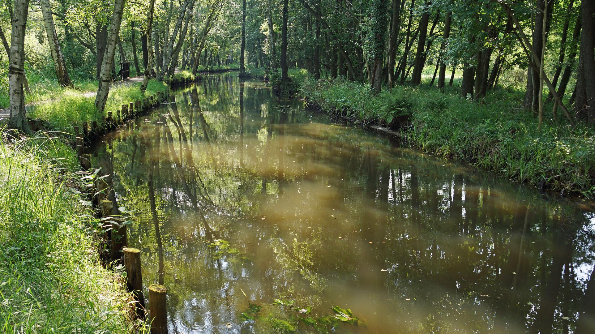 Spreewald-Kanal