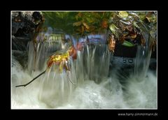 Spreewaldwasserfall