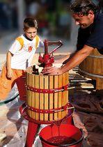 Spremitura del vino