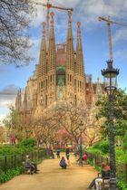 Spring at Sagrada