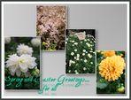 Spring & Easter Greetings