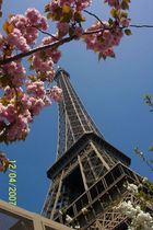 Spring in France
