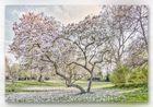 Spring No. 1067
