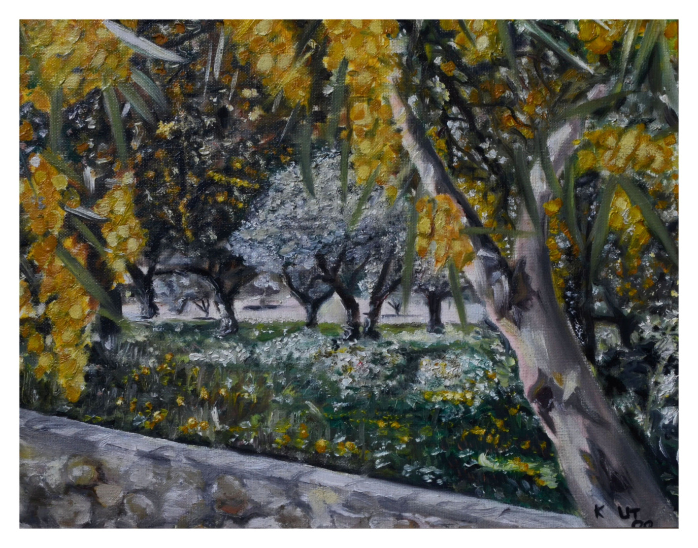 Spring on crete