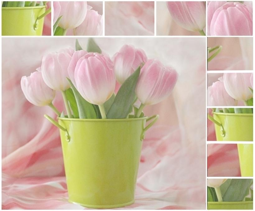 Spring romance II
