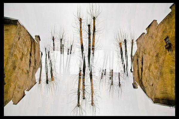 Spring topsy-turvy/ Vesennii perevertysh