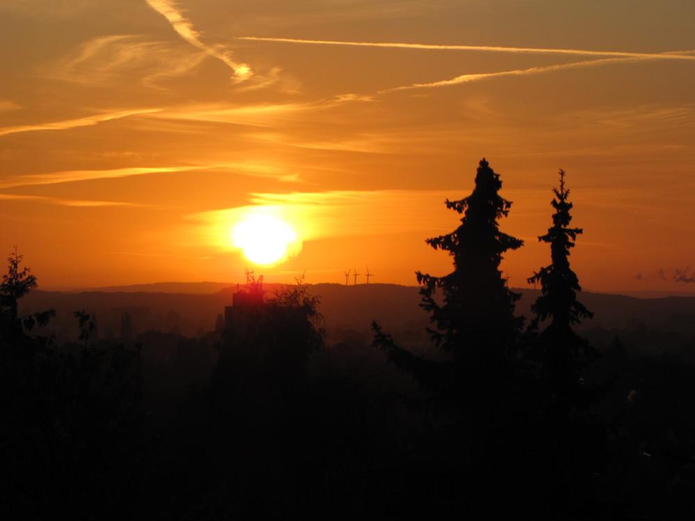 Springe-Sunrise