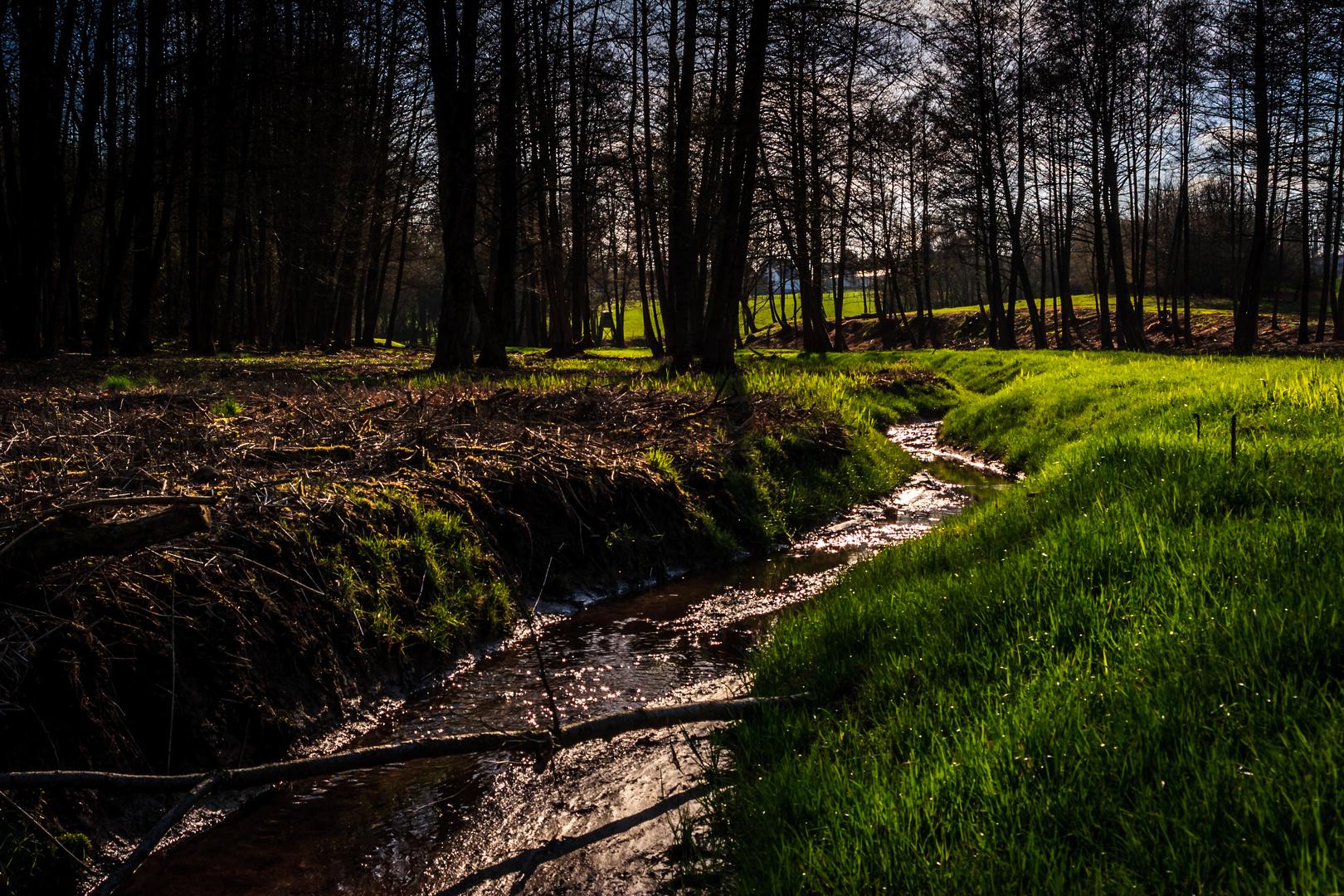 Spring(field)