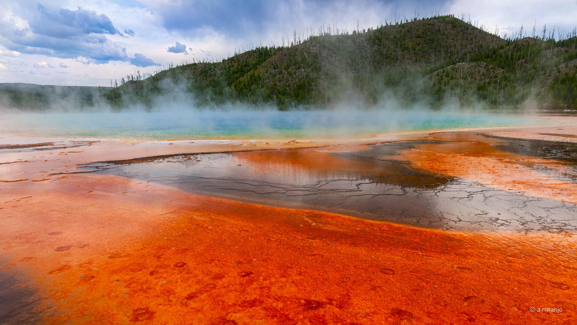 springs poole Yellowstone USA