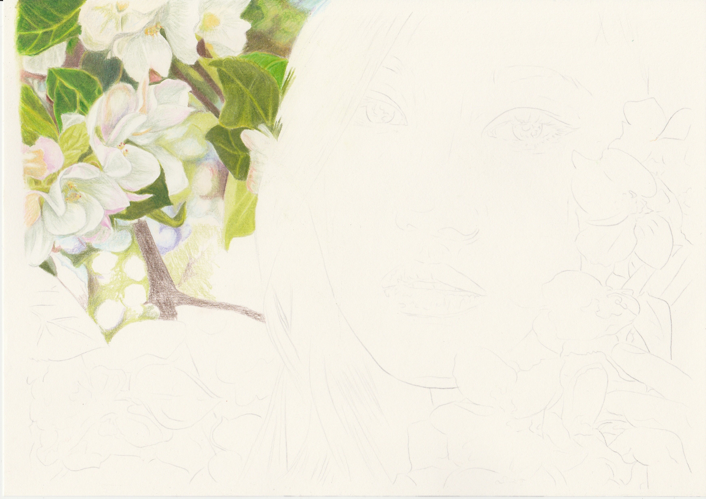 """""""Springtime Beauty"""" - Teil 1"""
