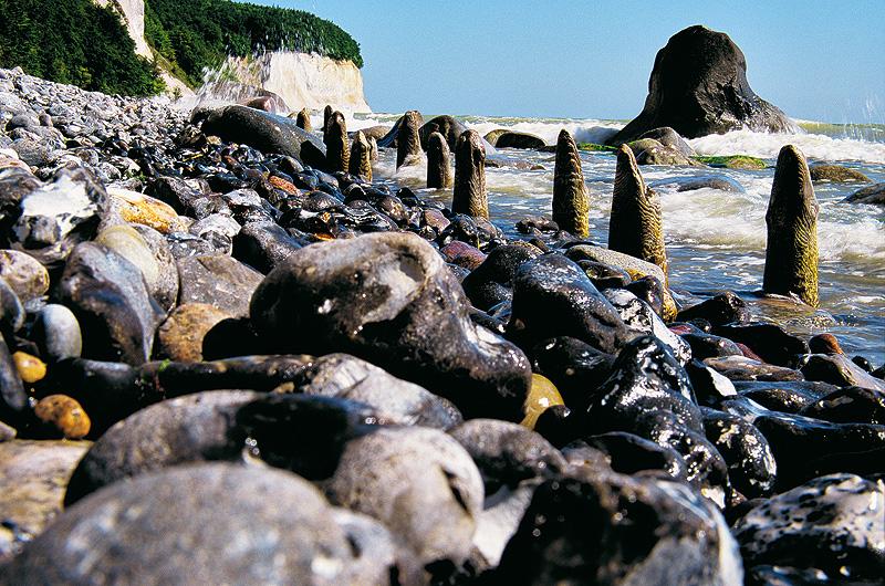 Spur der Steine auf Rügen...