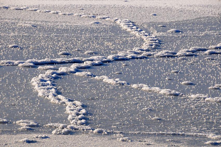 Spuren auf dem See