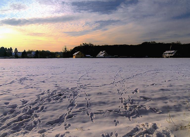 Spuren auf Schnee.