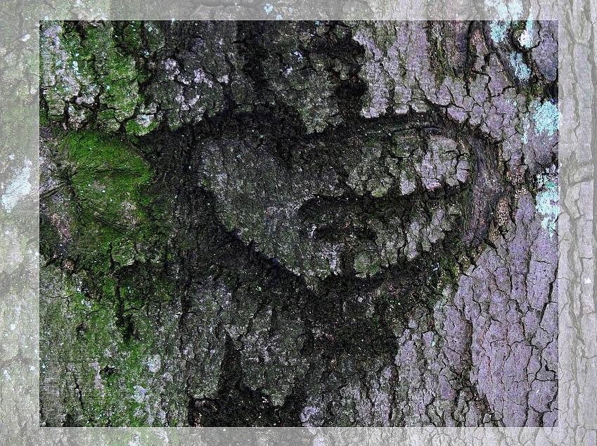 Spuren der Liebe
