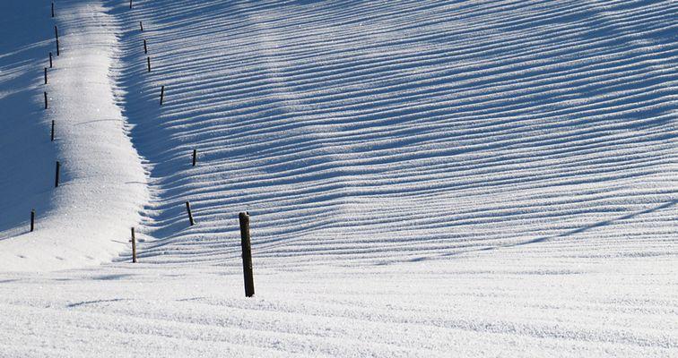 Spuren des Winters