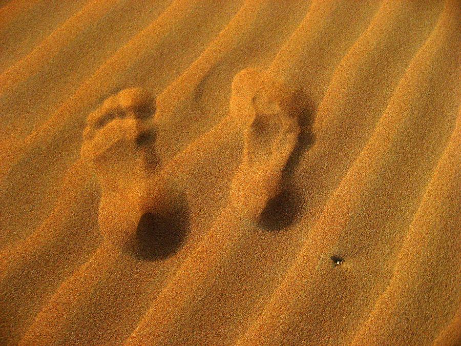 -Spuren im Arabischen Wüstensand-