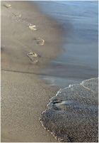 Spuren im Sand...