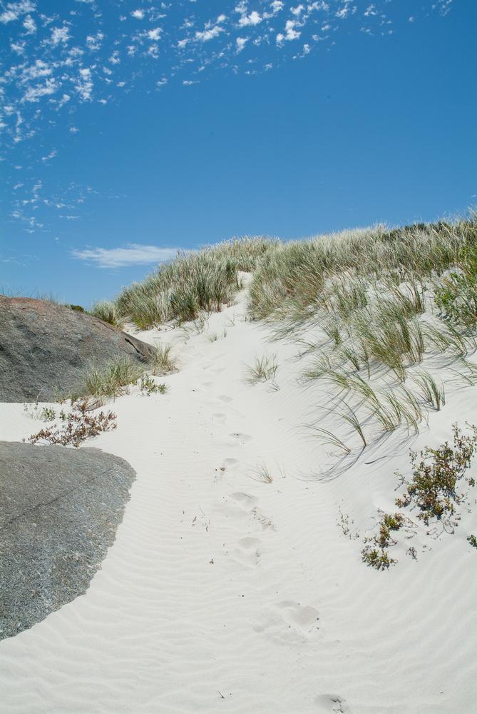 Spuren im Sand (2)