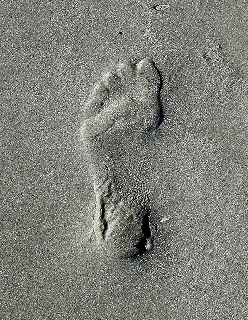 """""""Spuren im Sand"""""""