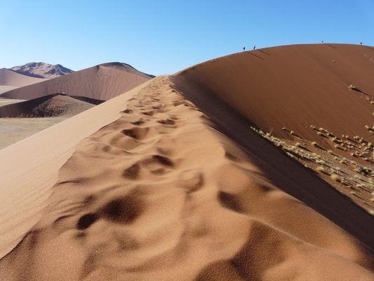 Spuren im Sand.... Düne 45