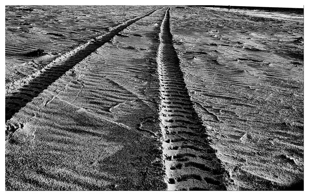 Spuren im Sand Ft. Lauderdale - Florida - USA