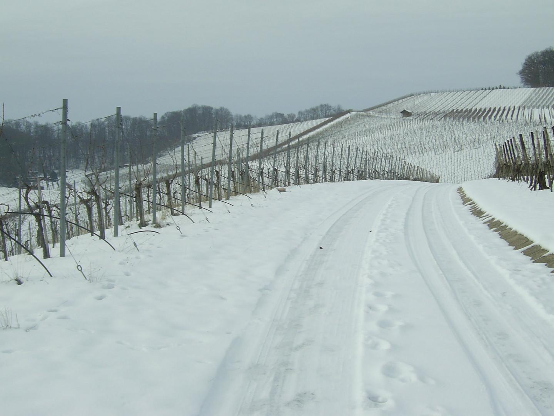 Spuren im Schnee 2012