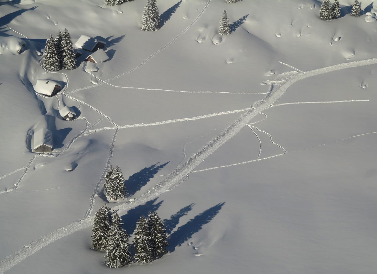 Spuren im tiefen Schnee...