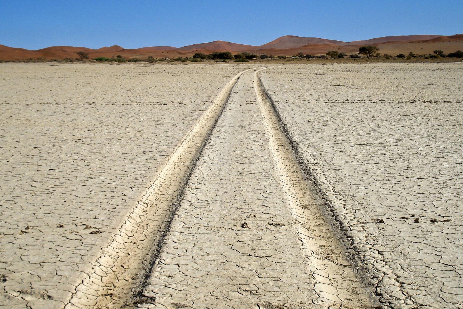 Spuren in der Namib