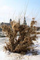 Spuren vom Winterhochwasser 2012