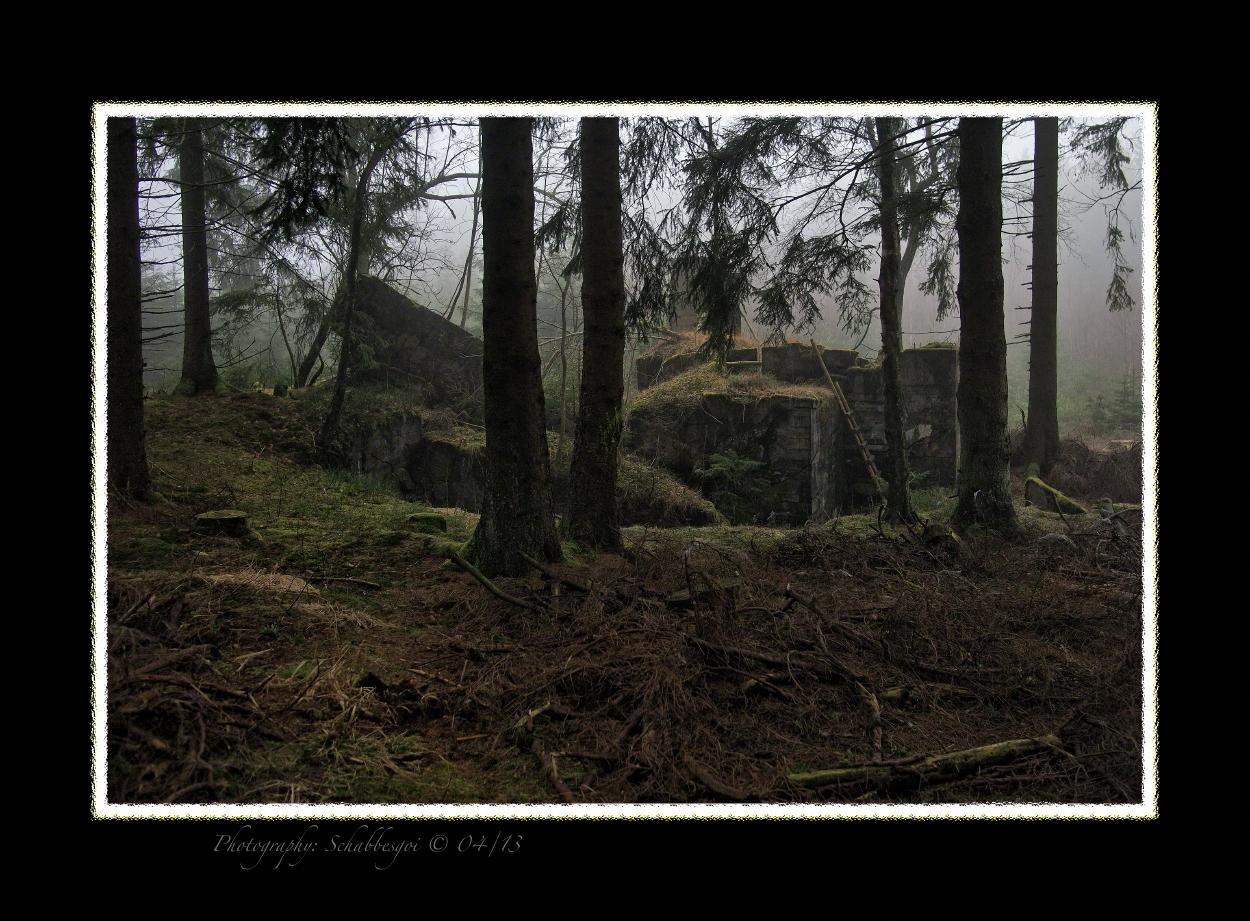 Spurensuche Geschichte ( 72 ) WK II Bunker Westwall