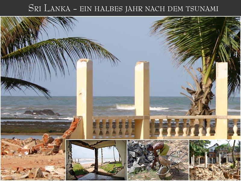Sri Lanka - ein halbes Jahr nach dem Tsunami