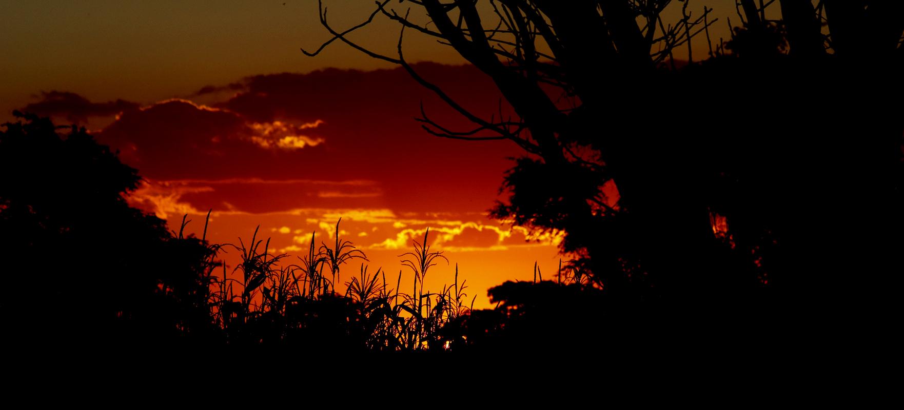 St Kizito, Zambia April 2011