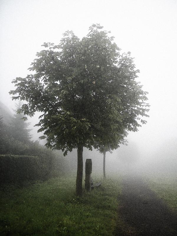 St. Märgen im Nebel
