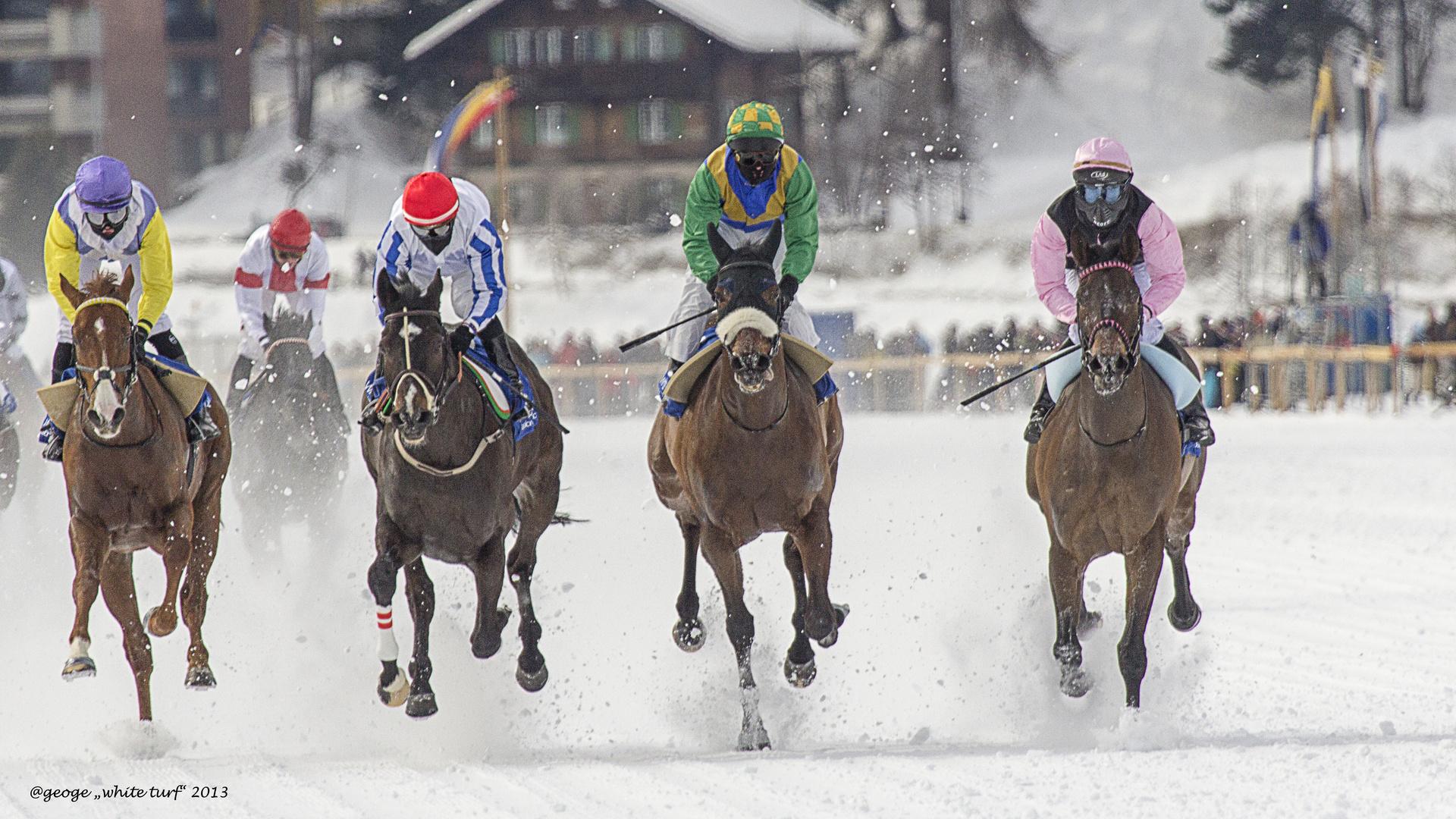 """St. Moritz """"White Turf"""" 2013"""