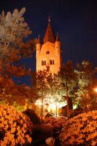St. Petrikirche bei Nacht