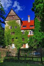Staatliche Vogelschutzwarte Seebach (2)