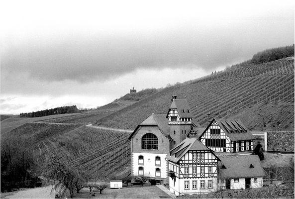 Staatliche Weinbaudomäne Avelsbach, Trier