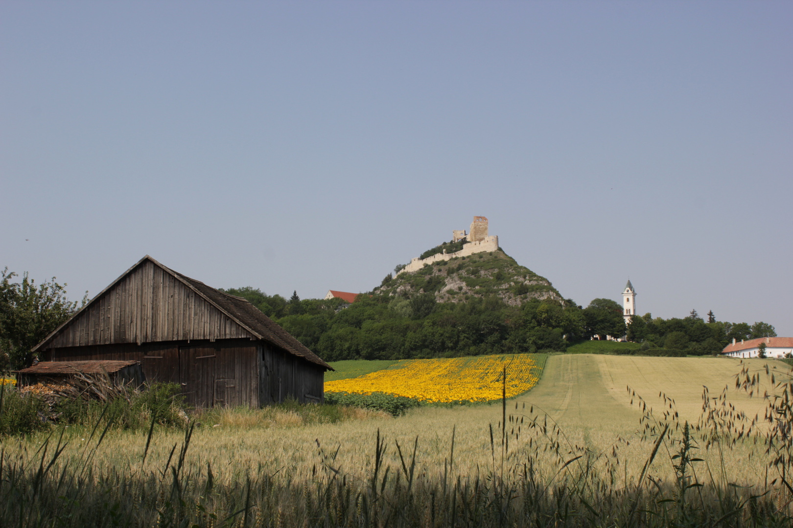 Staatzer Berg