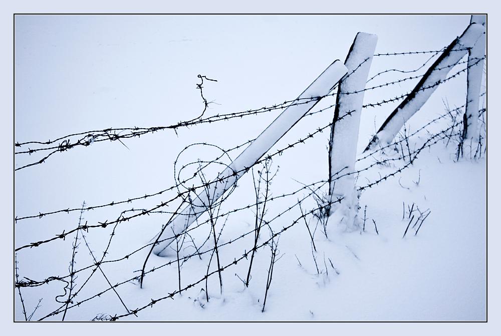 Stacheldrahtzaun im Schnee