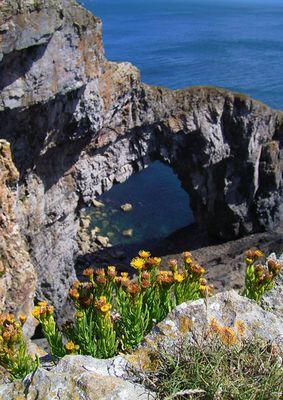 Stack Rocks, Pembrokeshire National Park