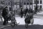 Stadt auf Rädern (2)
