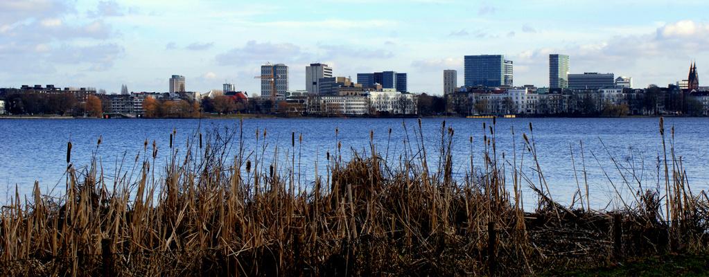 Stadt vs. Natur